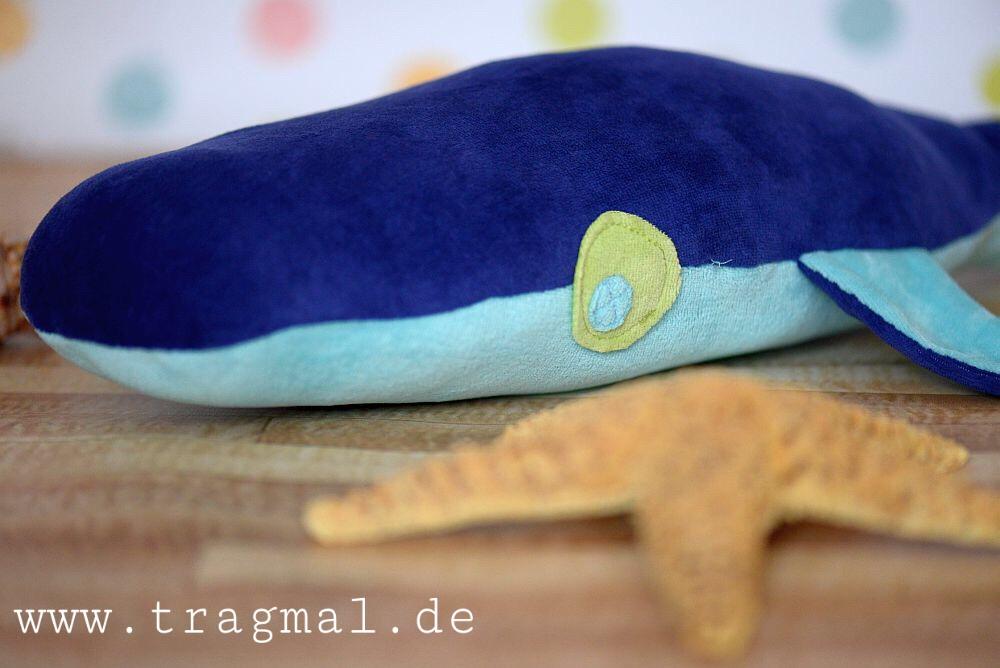 Kissen Hai