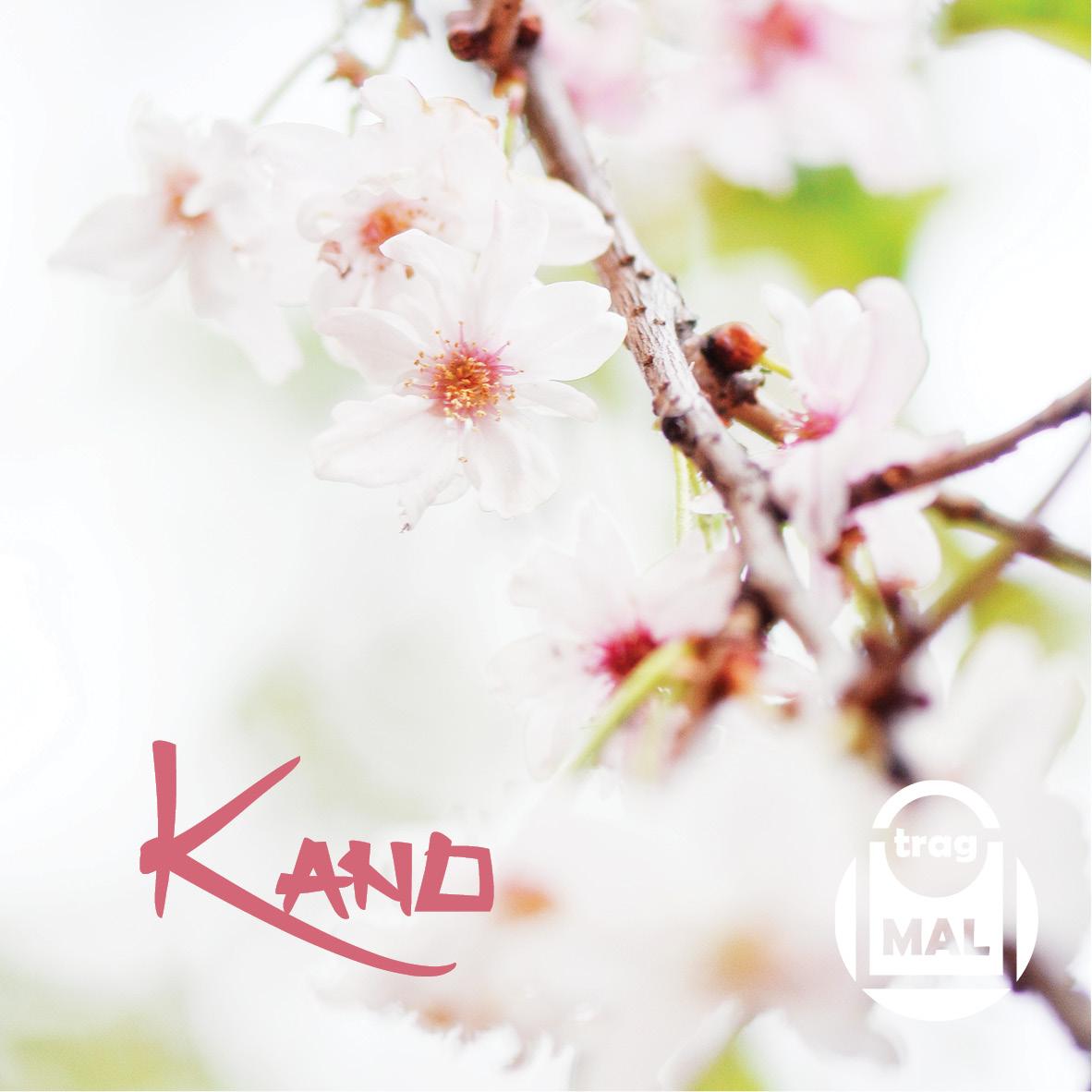 KANO Kleid